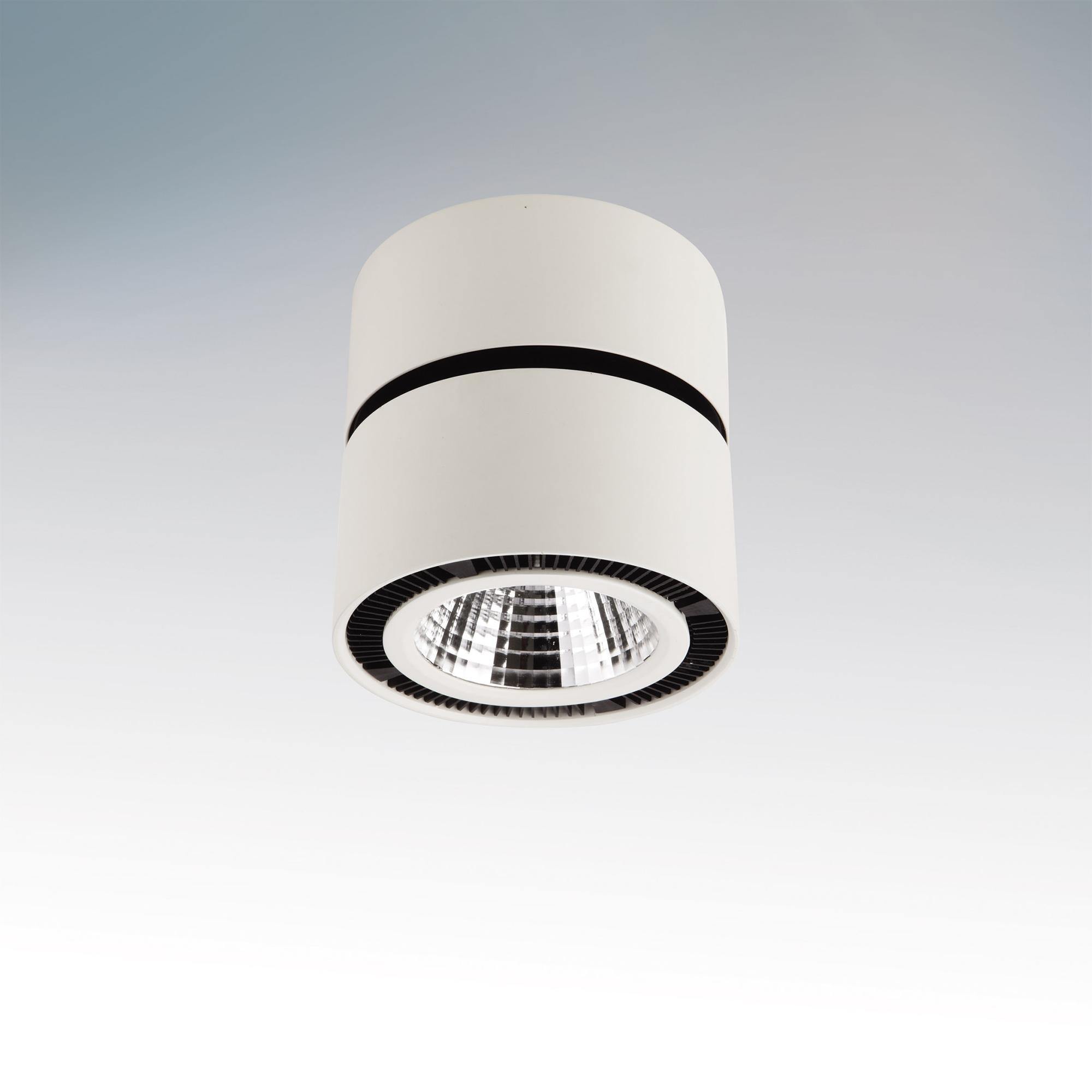 Черно-белый точечный светильник