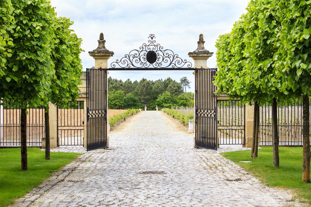 Роскошные кованые ворота
