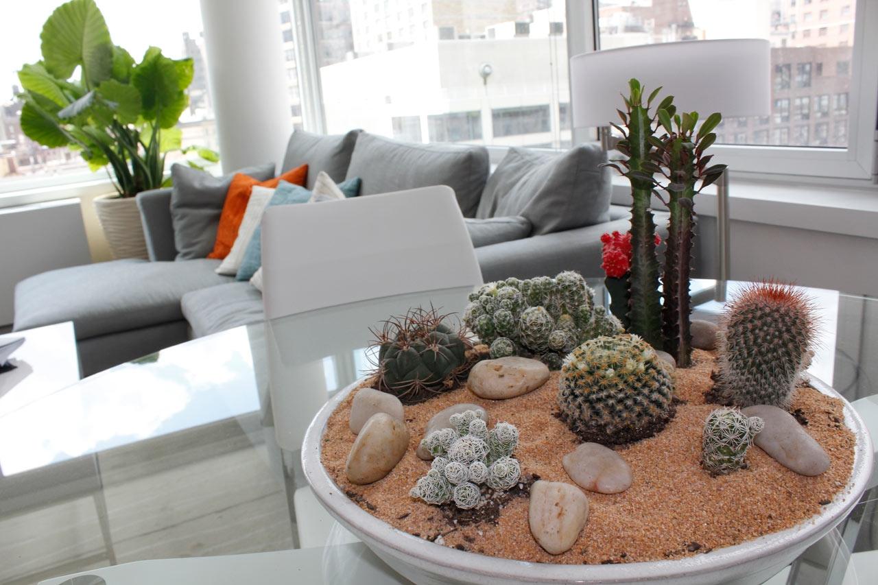 Большой флорариум с кактусами в гостиной