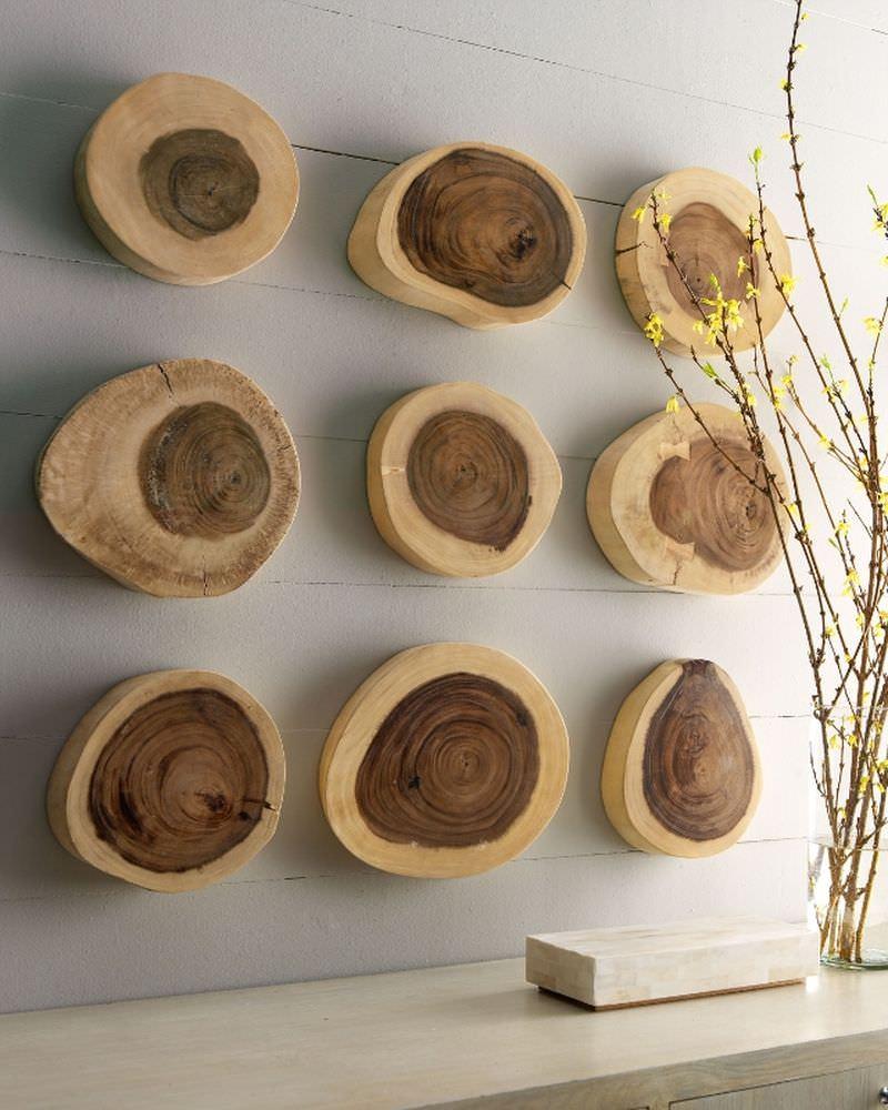 Спилы дерева на стене в интерьере