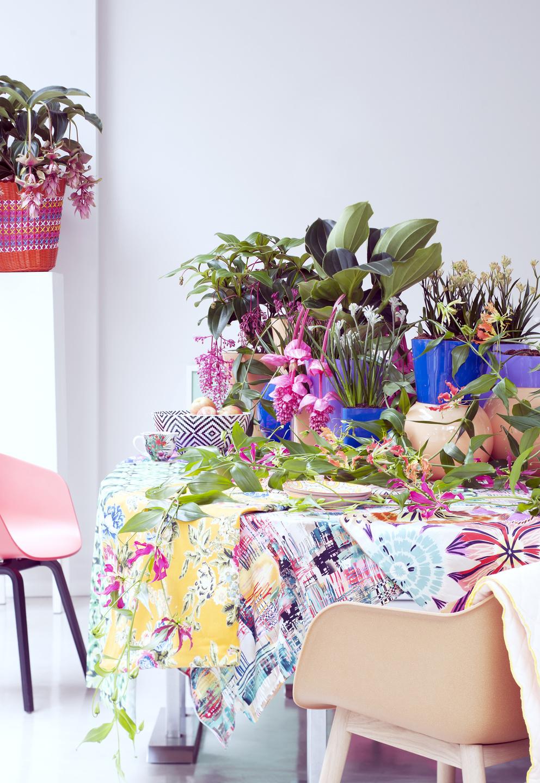 Цветы глориозы на столе дачного домика