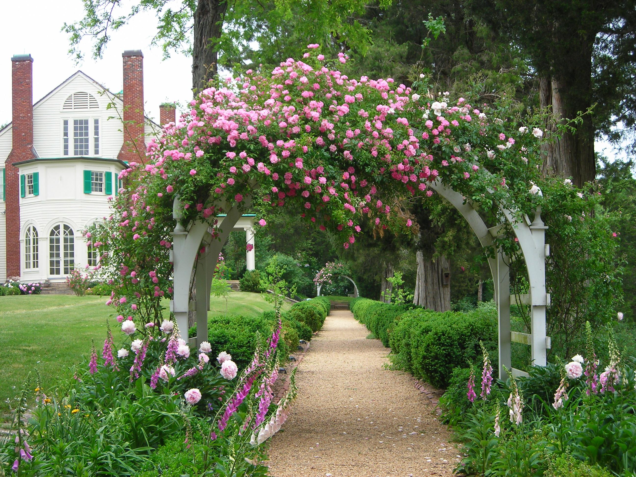 Пергола – необычное украшение сада (29 фото)