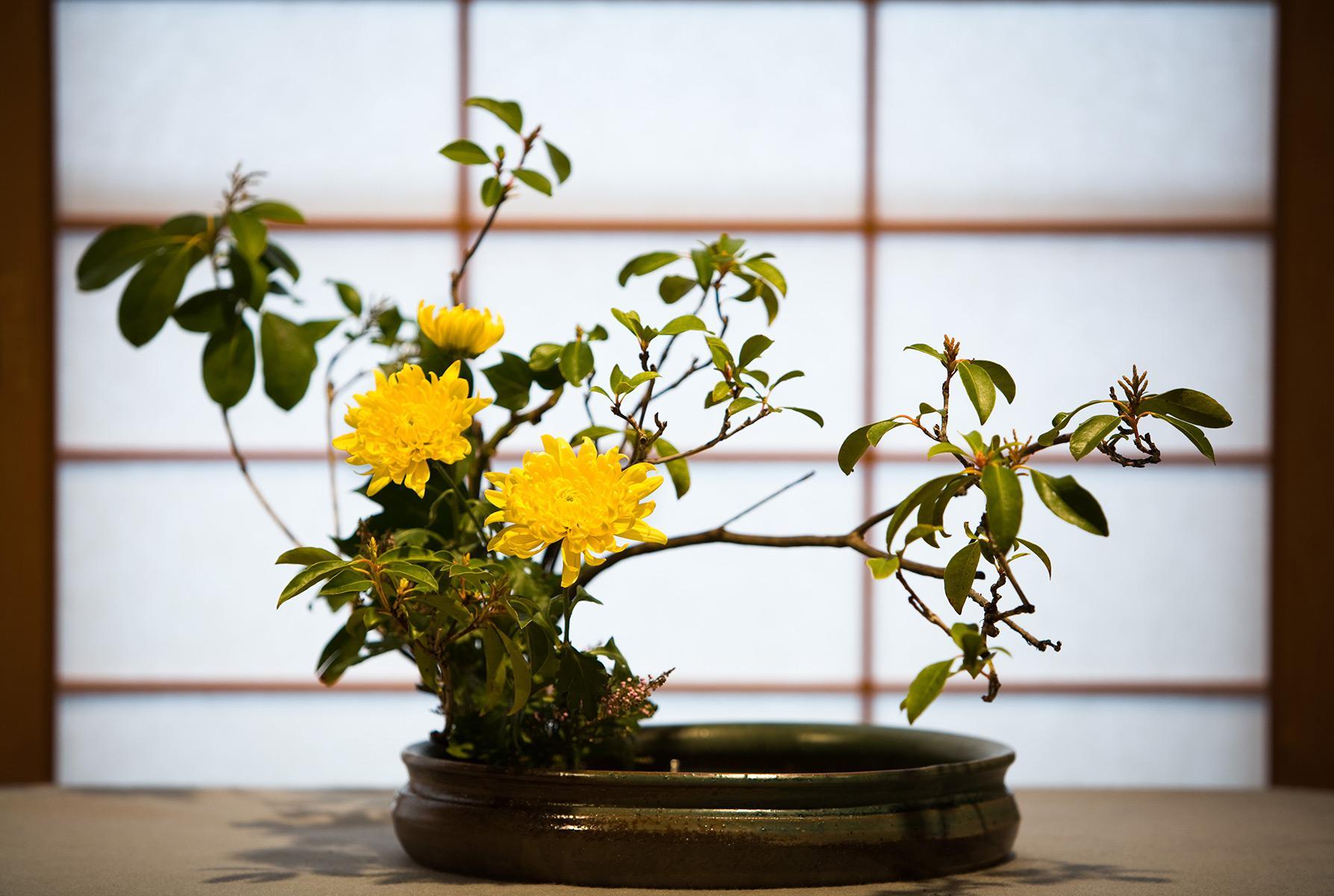 Японская Красивая Икебана из Цветок и Веток, Как Сделать Своими Руками