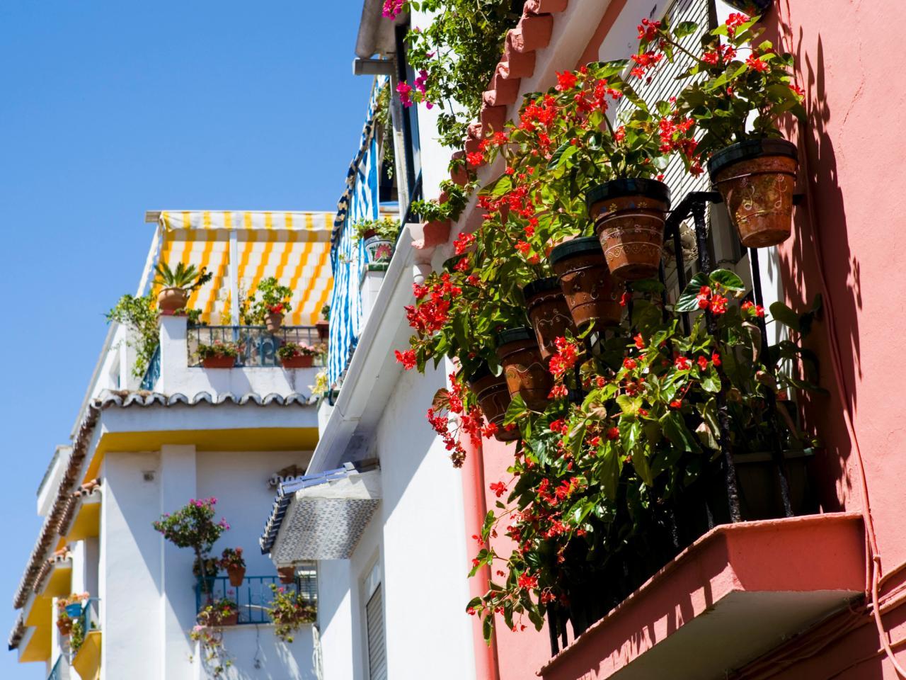 Цветы в керамических горшках на балконе