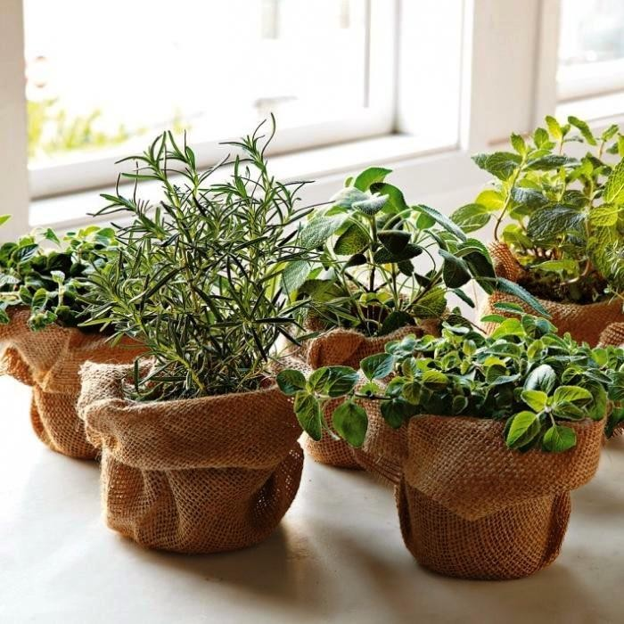 Декор цветочных горшков мешковиной