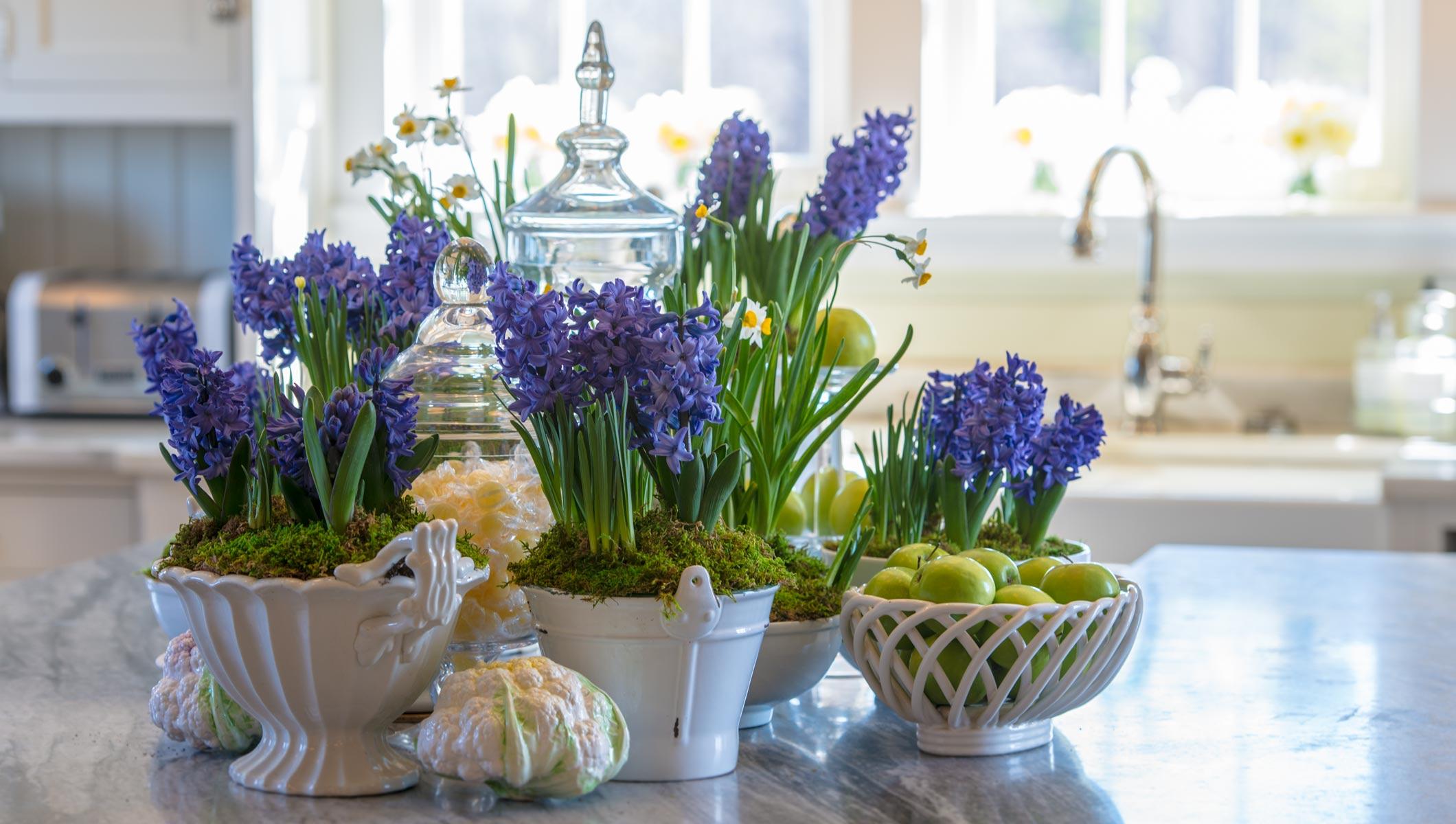 Гиацинты в интерьере кухни