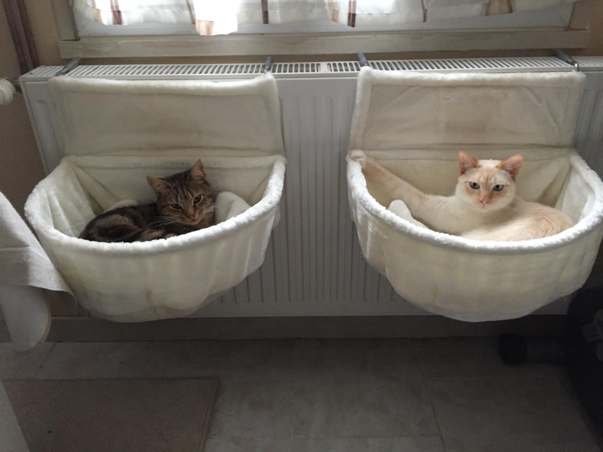 Гамак лежак для кошки