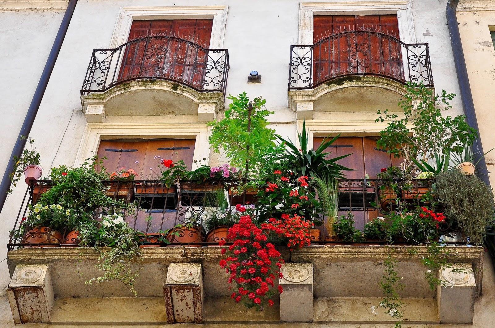 Наружное озеленение балкона