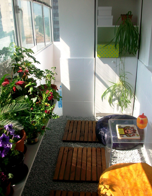 Сад на остекленном балконе