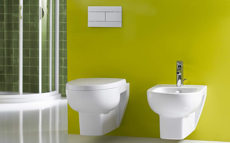 Безободковый унитаз в интерьере ванной комнты (21 фото)