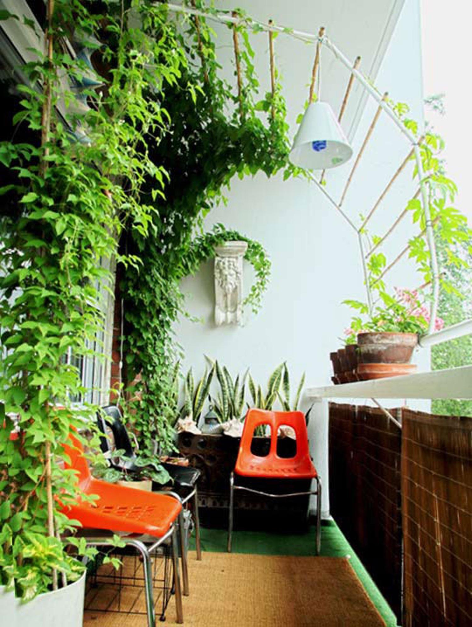 """Зеленая """"стена"""" на балконе"""