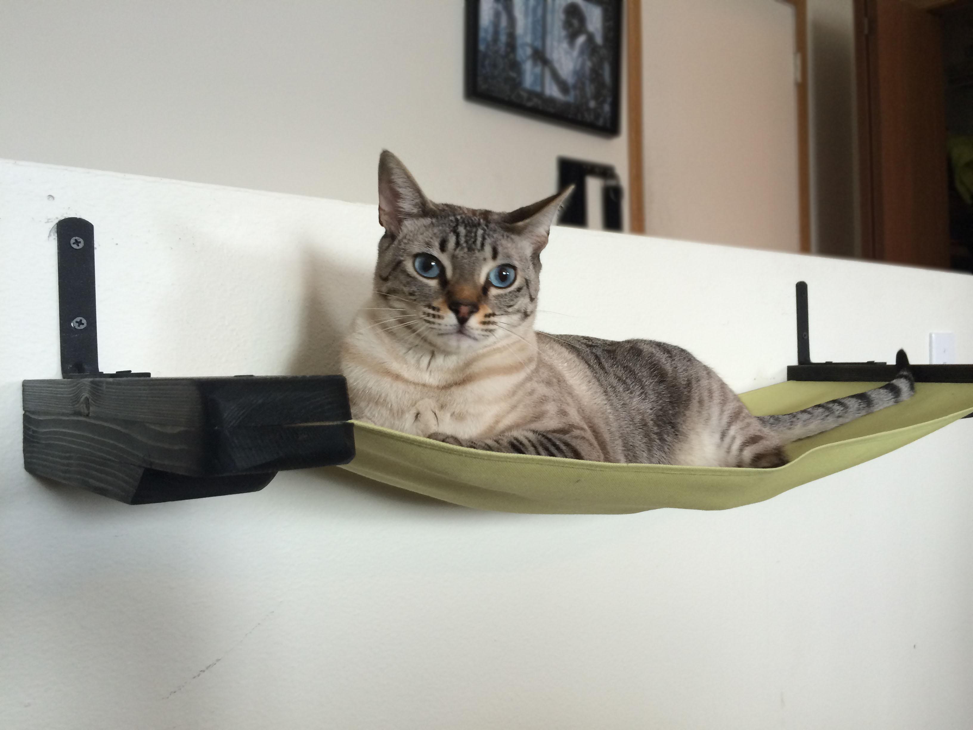 Гамак для кошки тканевый