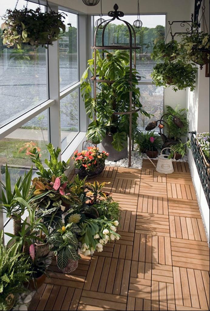 Сад на застекленном балконе