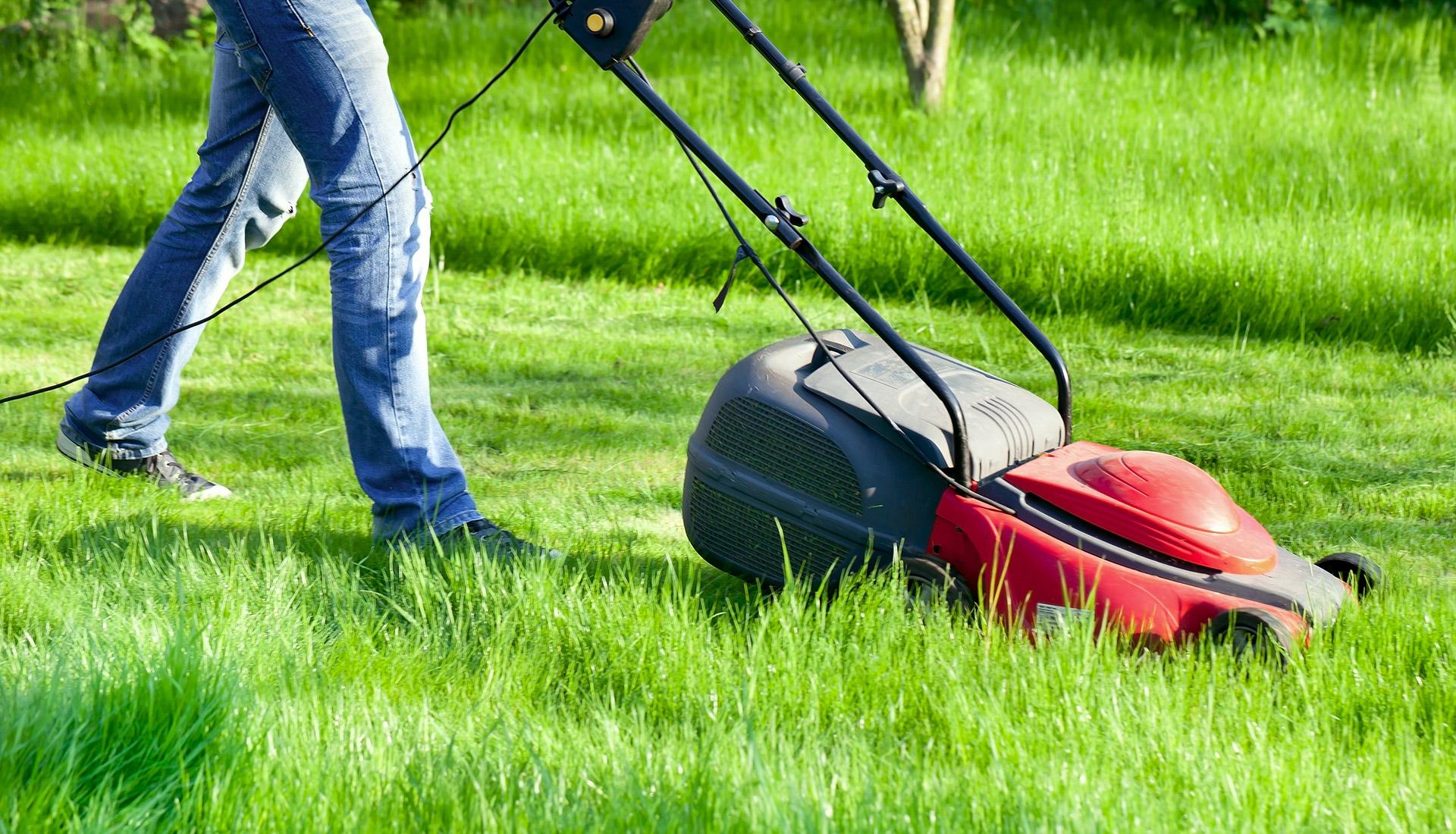 Газонокосилка с большим баком для травы