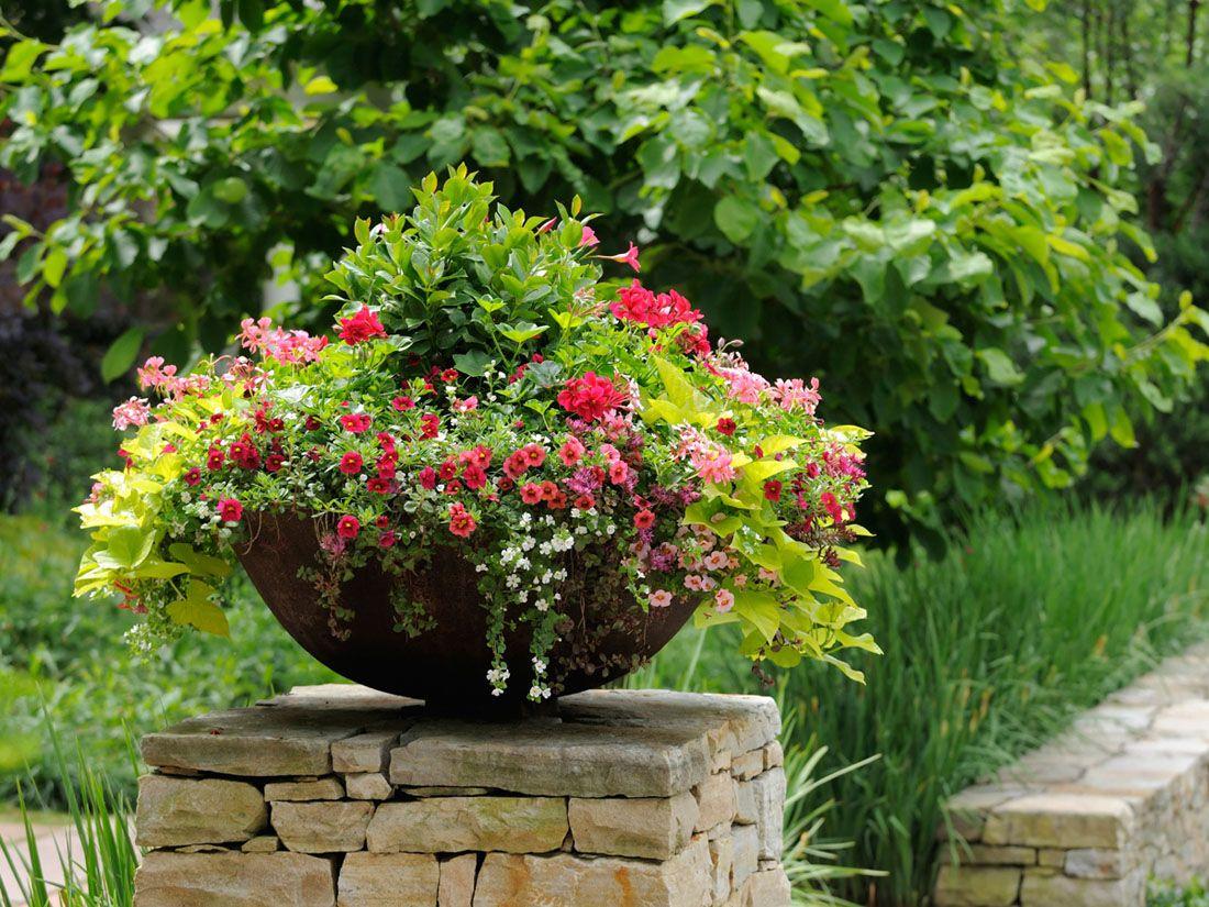 Цветы в декоре сада