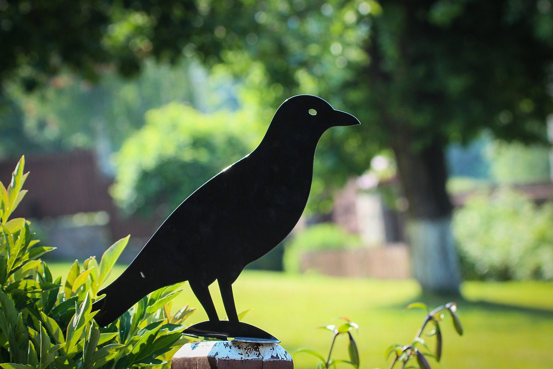 Садовая фигура ворона из металла
