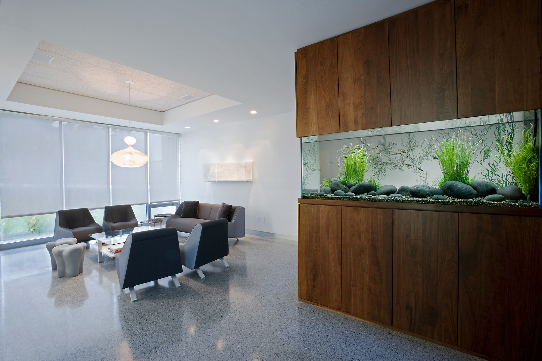 Декор для аквариума в гостиной