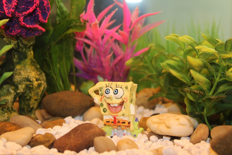 Декор для аквариума губка боб