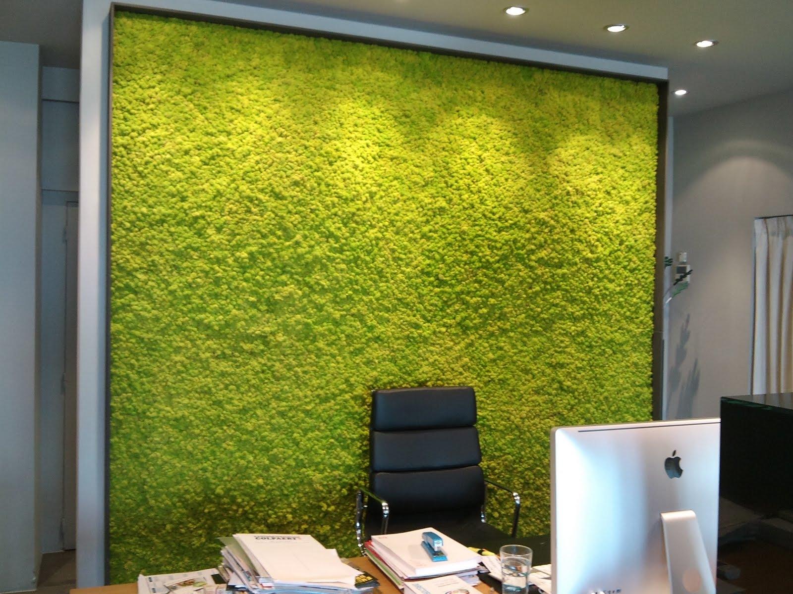 Вертикальное озеленение в кабинете