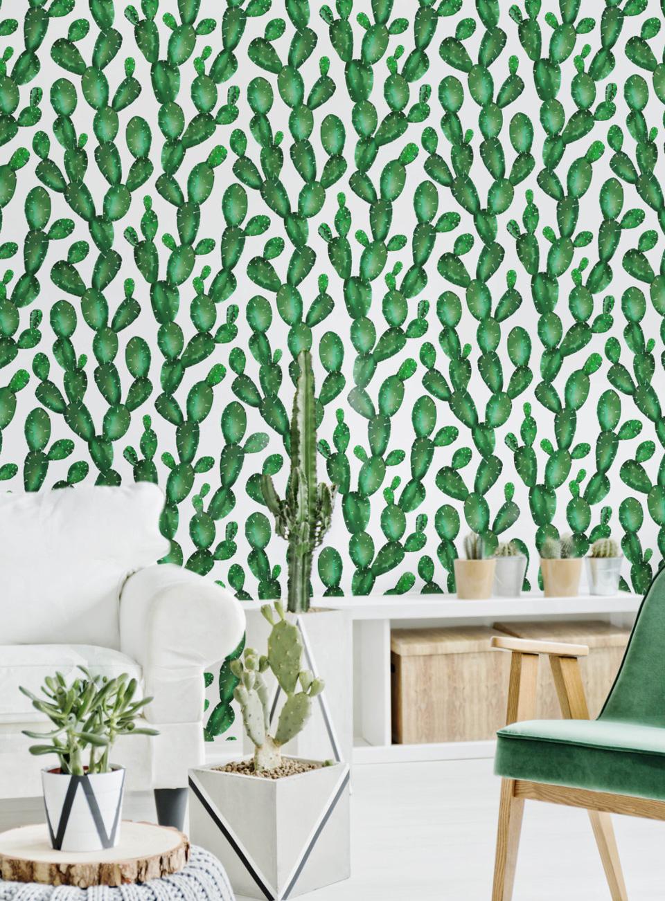 Белые обои с рисунком кактусов