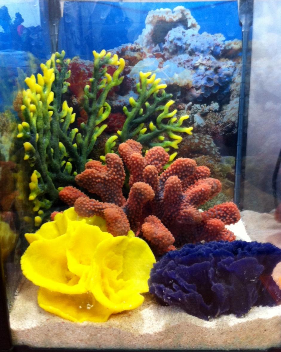 Декор аквариума камнями и кораллами