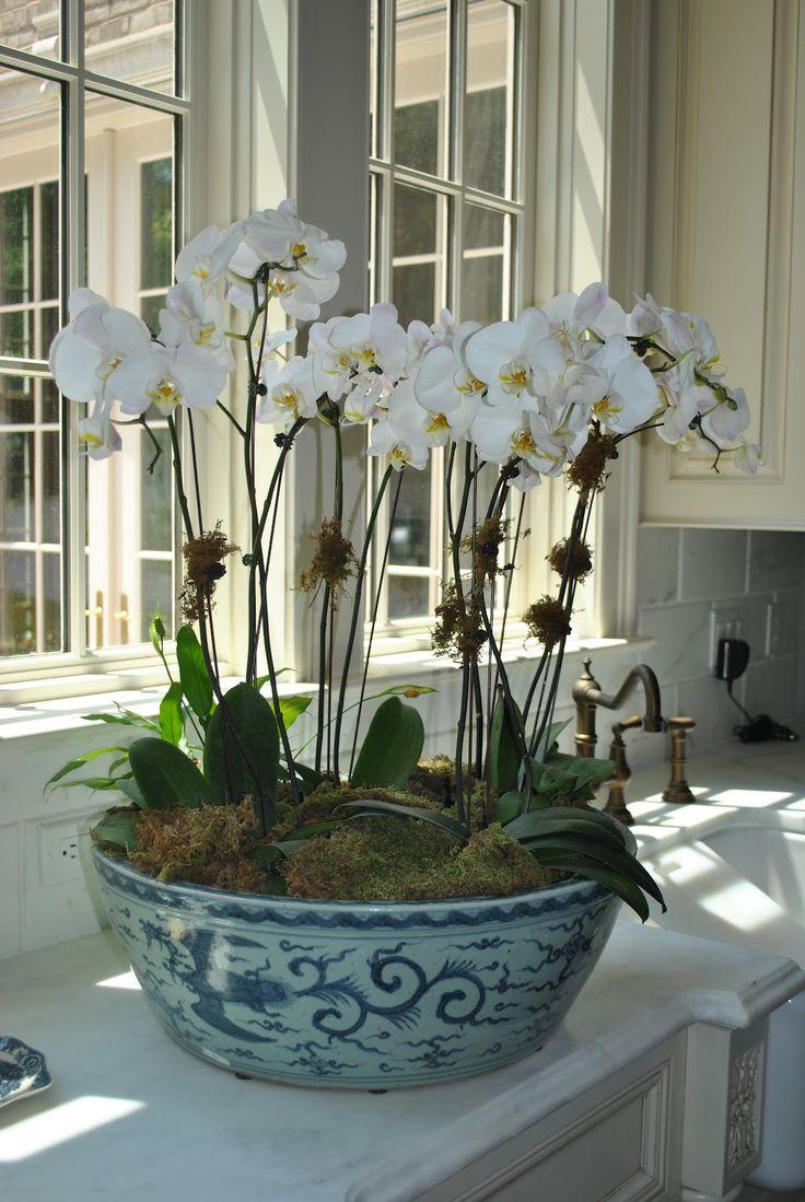 Орхидея Ванда в интерьере кантри