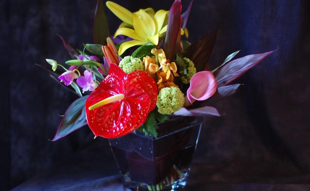 Антуриум в цветочной композиции