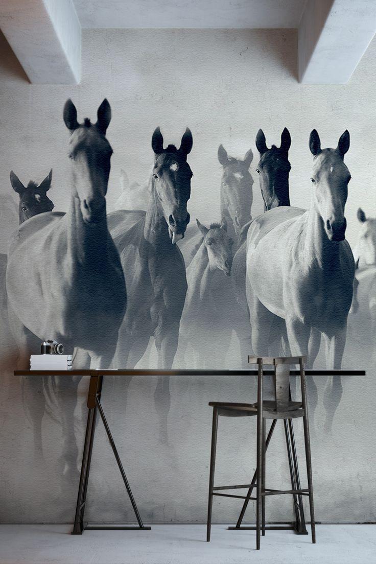 Рисунок коней на стене
