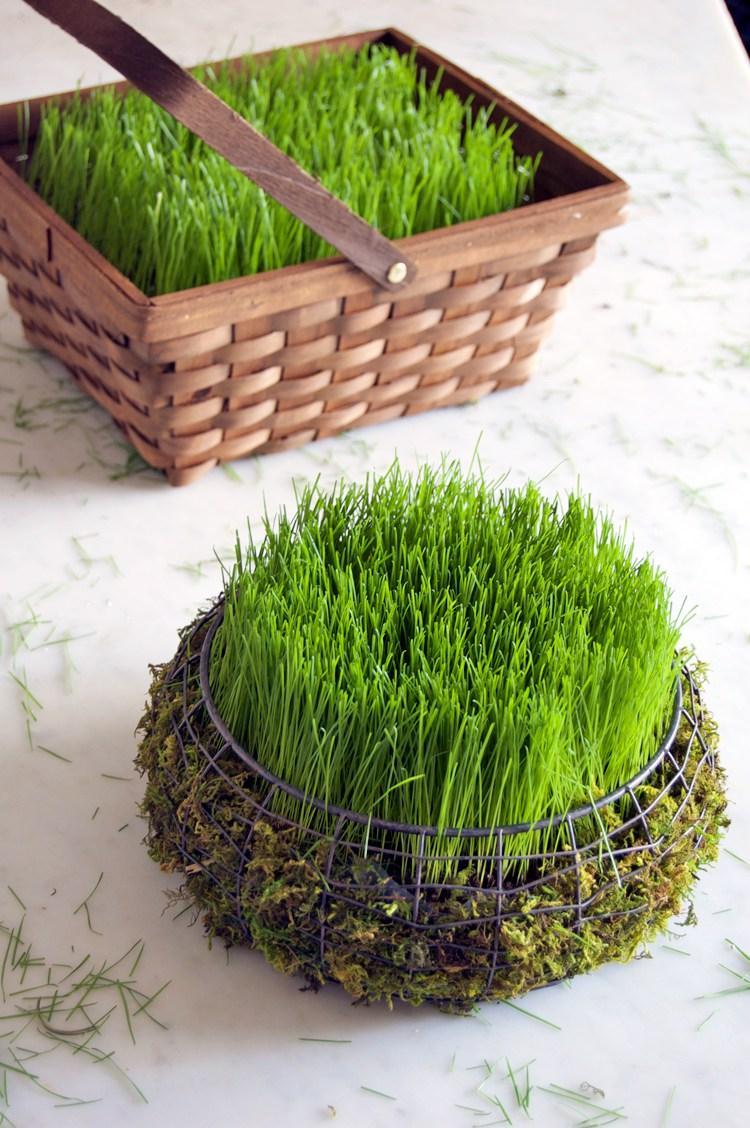Трава в декоративной корзинке