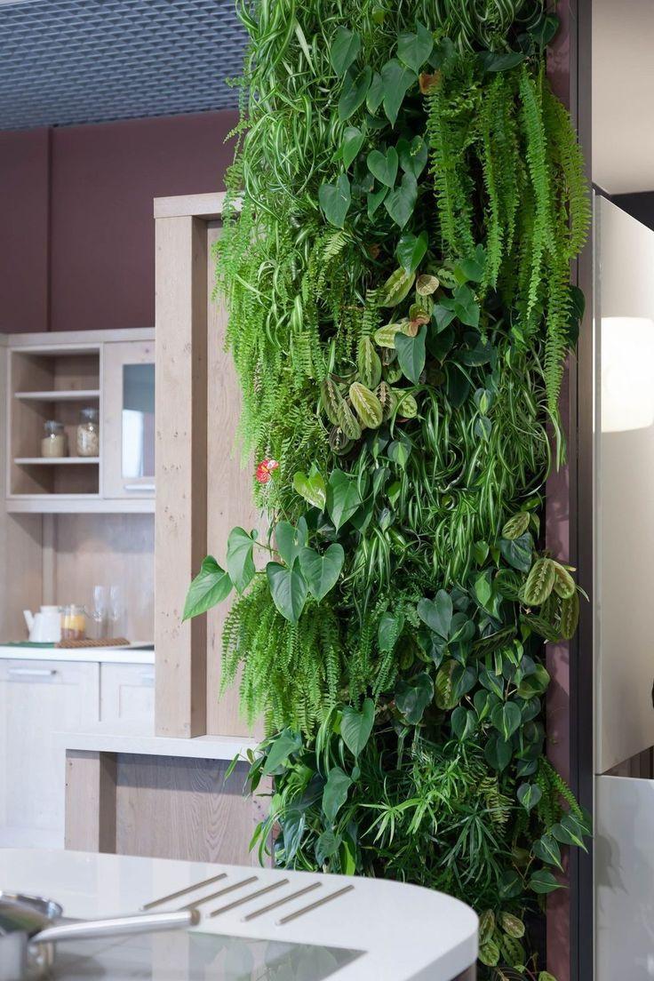 Вертикальное озеленение в интерьере кухни