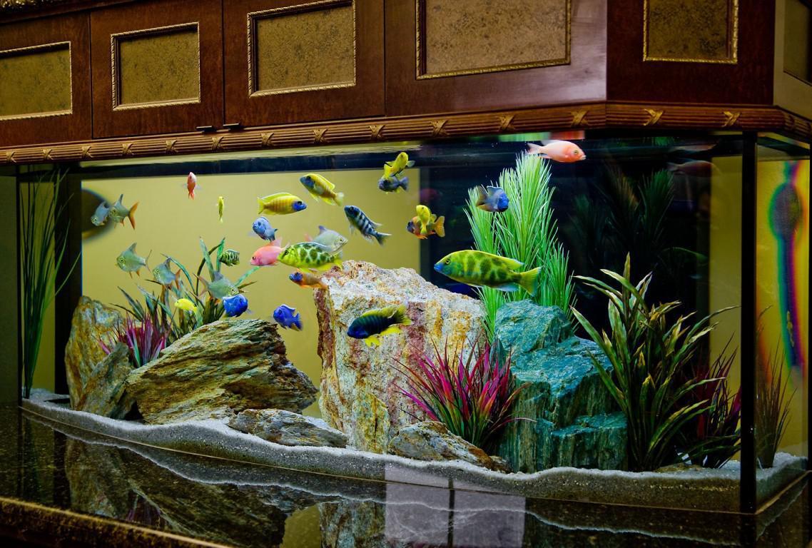 Декор для аквариума кварцевый