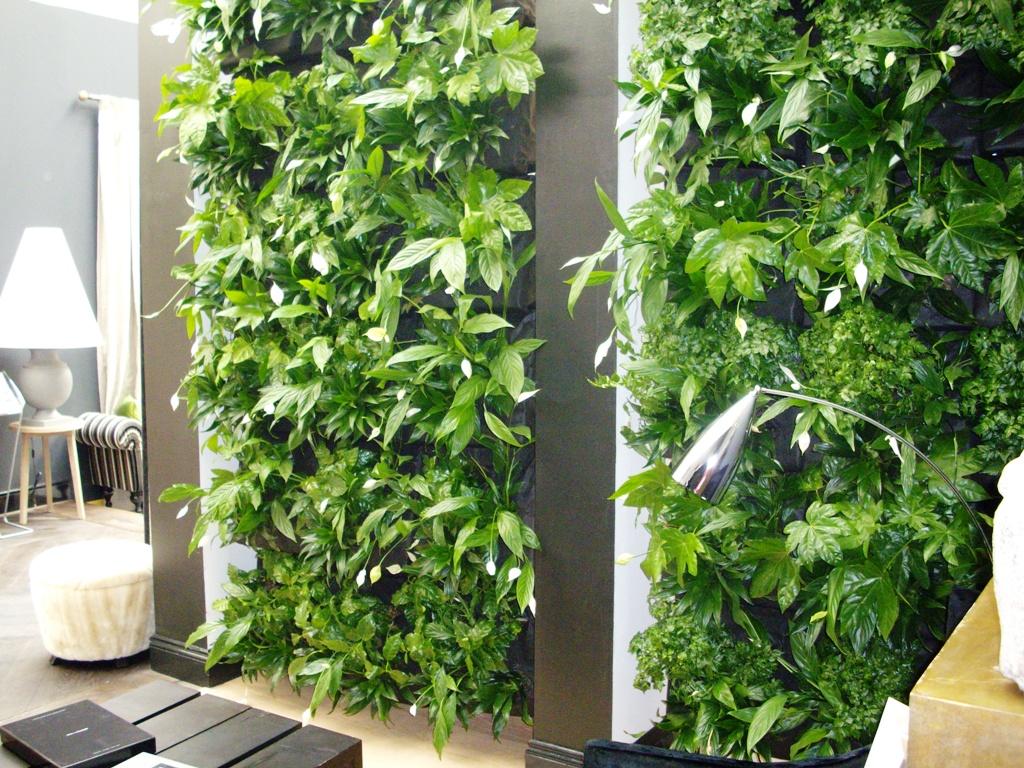 Вертикальное озеленение в интерьере квартиры