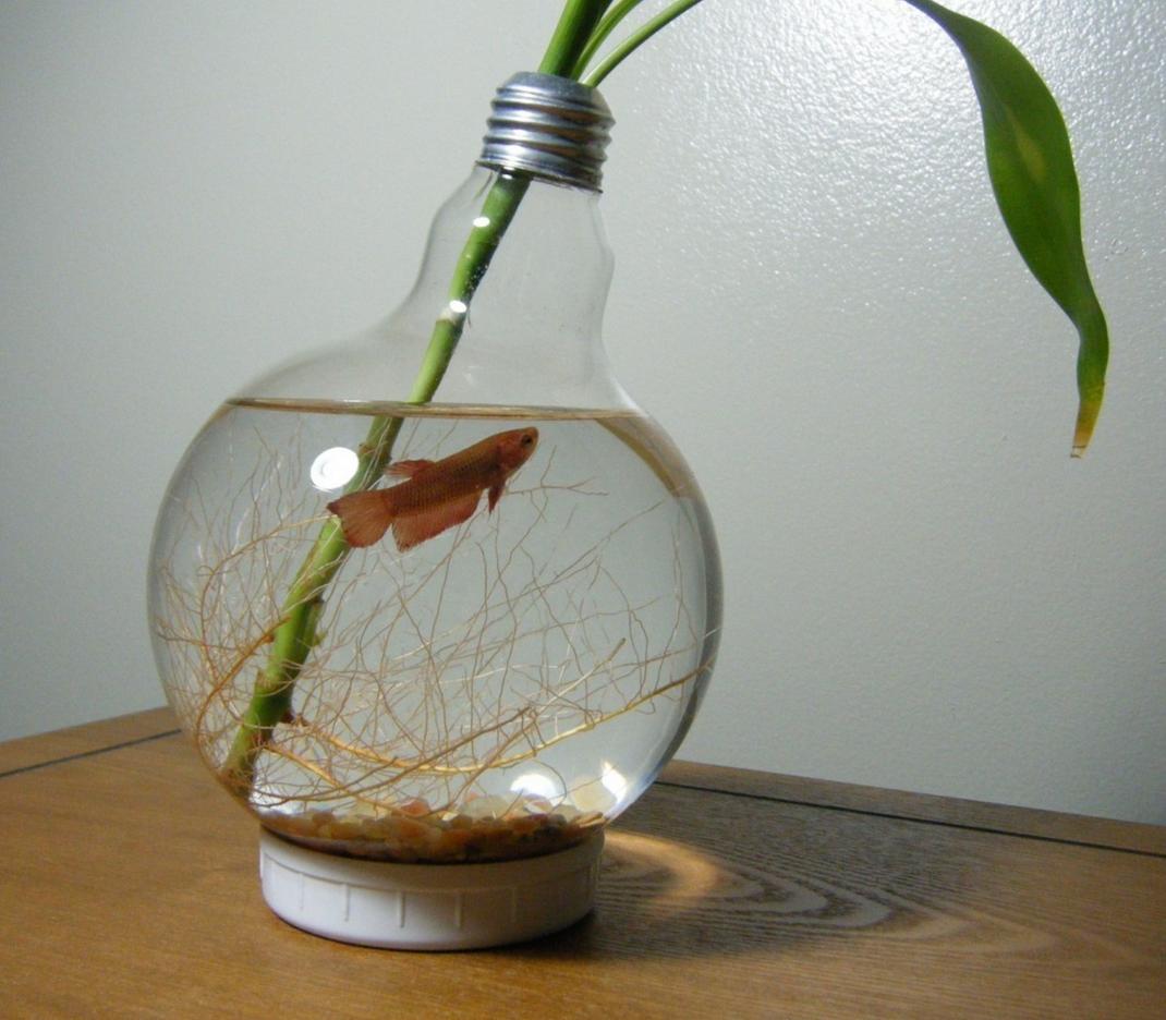 Декор для аквариума из лампы