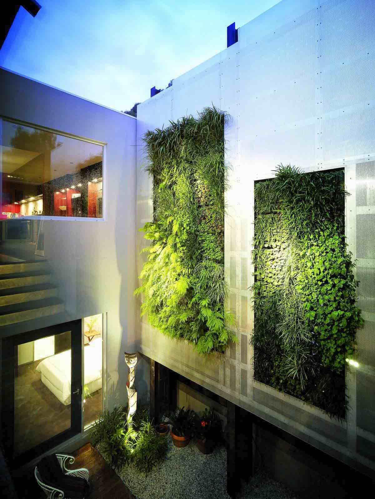 Вертикальное озеленение в особняке