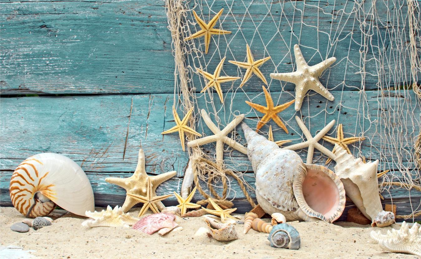 Морской декор ракушками