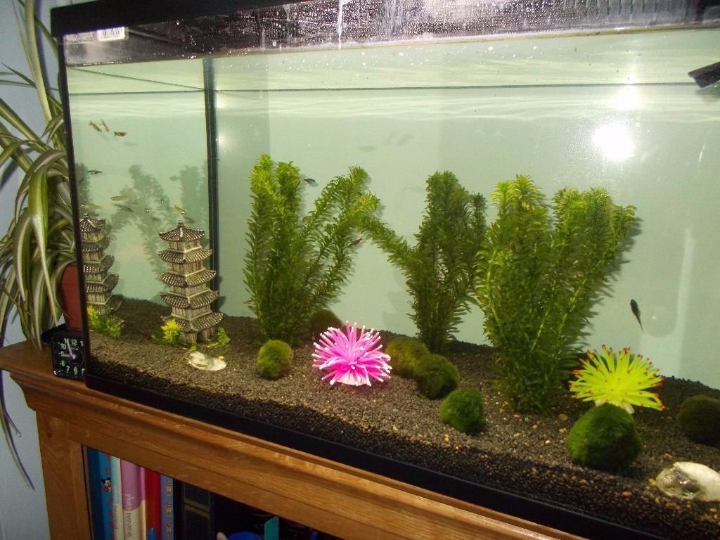 Декор для аквариума с растениями