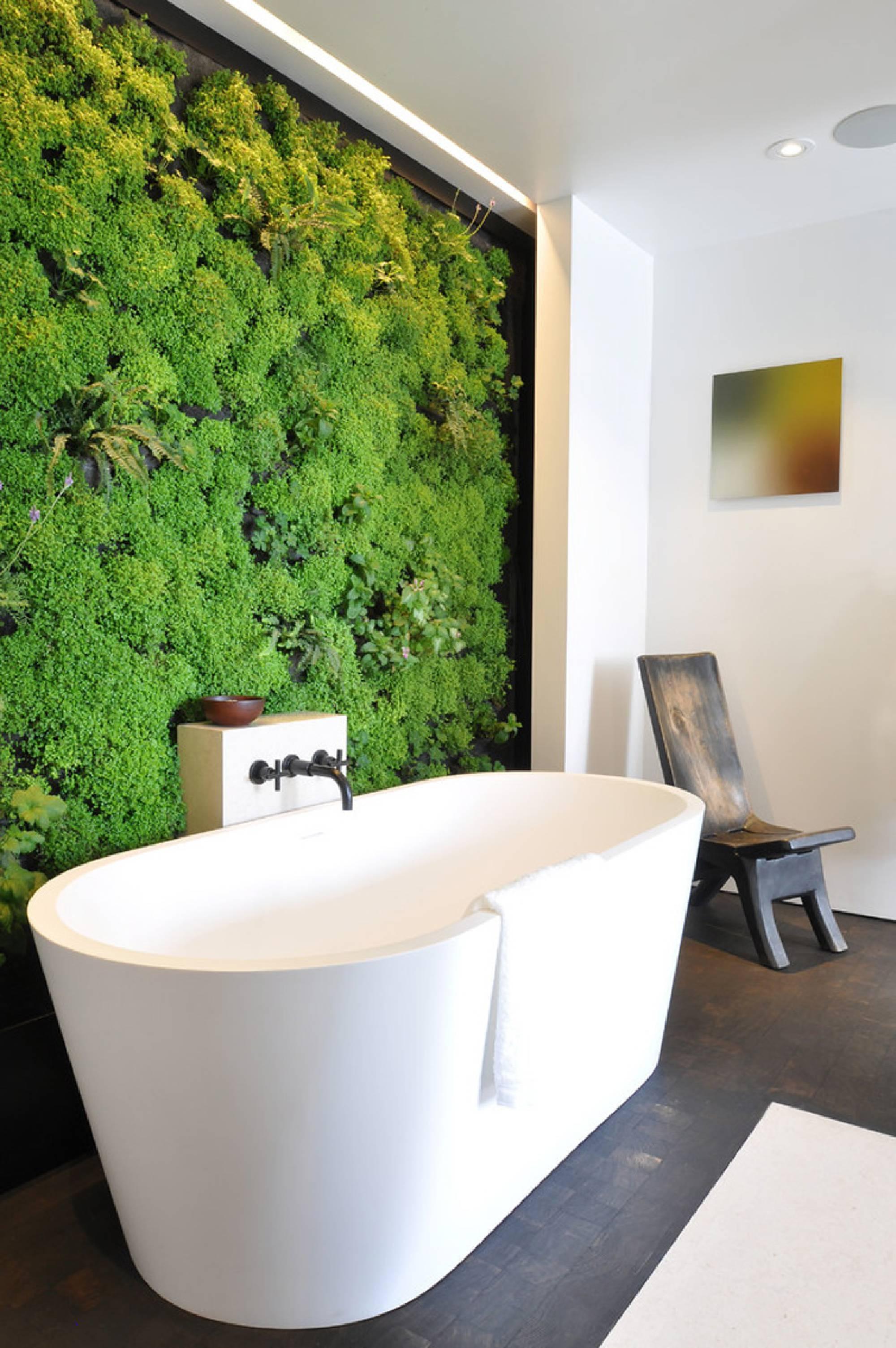 Вертикальное озеленение в ванной