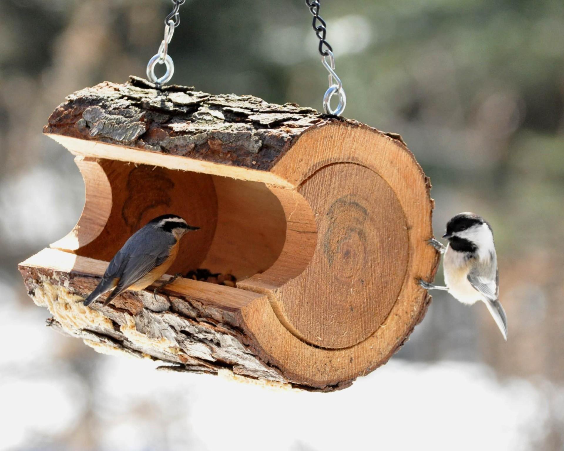 Кормушка для птиц из бруса