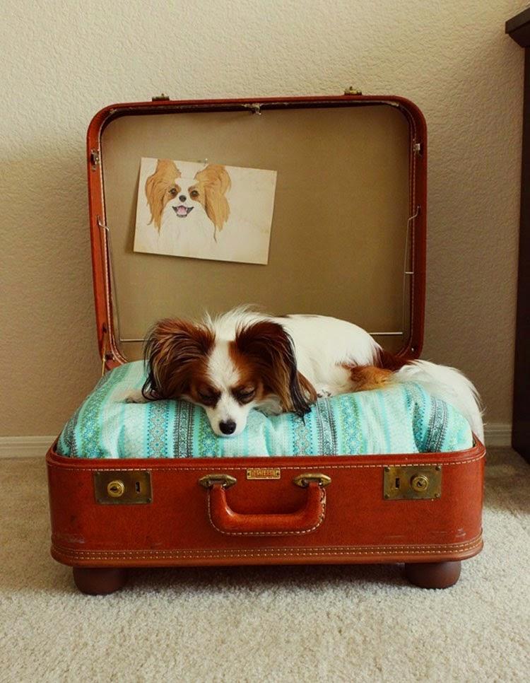 Лежанка для собаки из чемодана