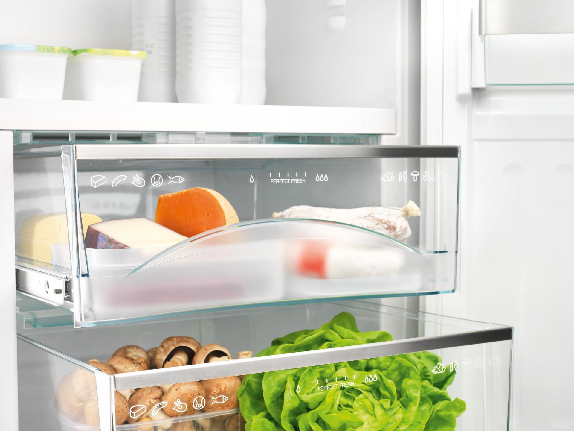 Удаление плесени в холодильнике