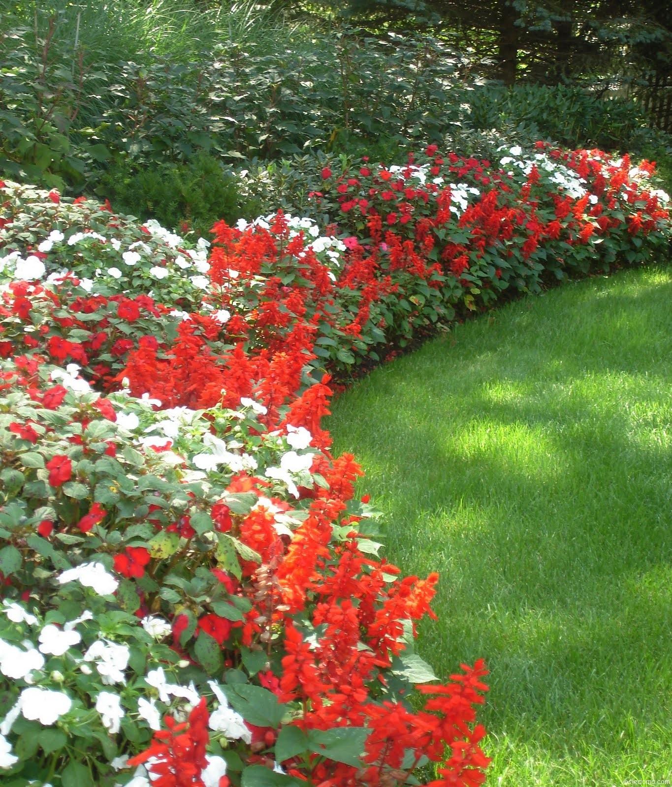 Миксбордер из красных цветов