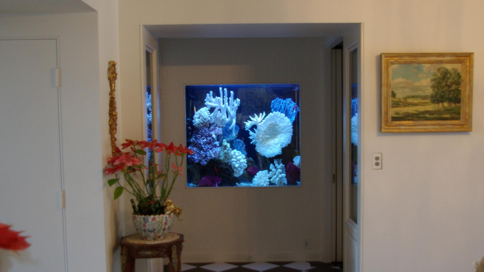 Квадратный аквариум в стене