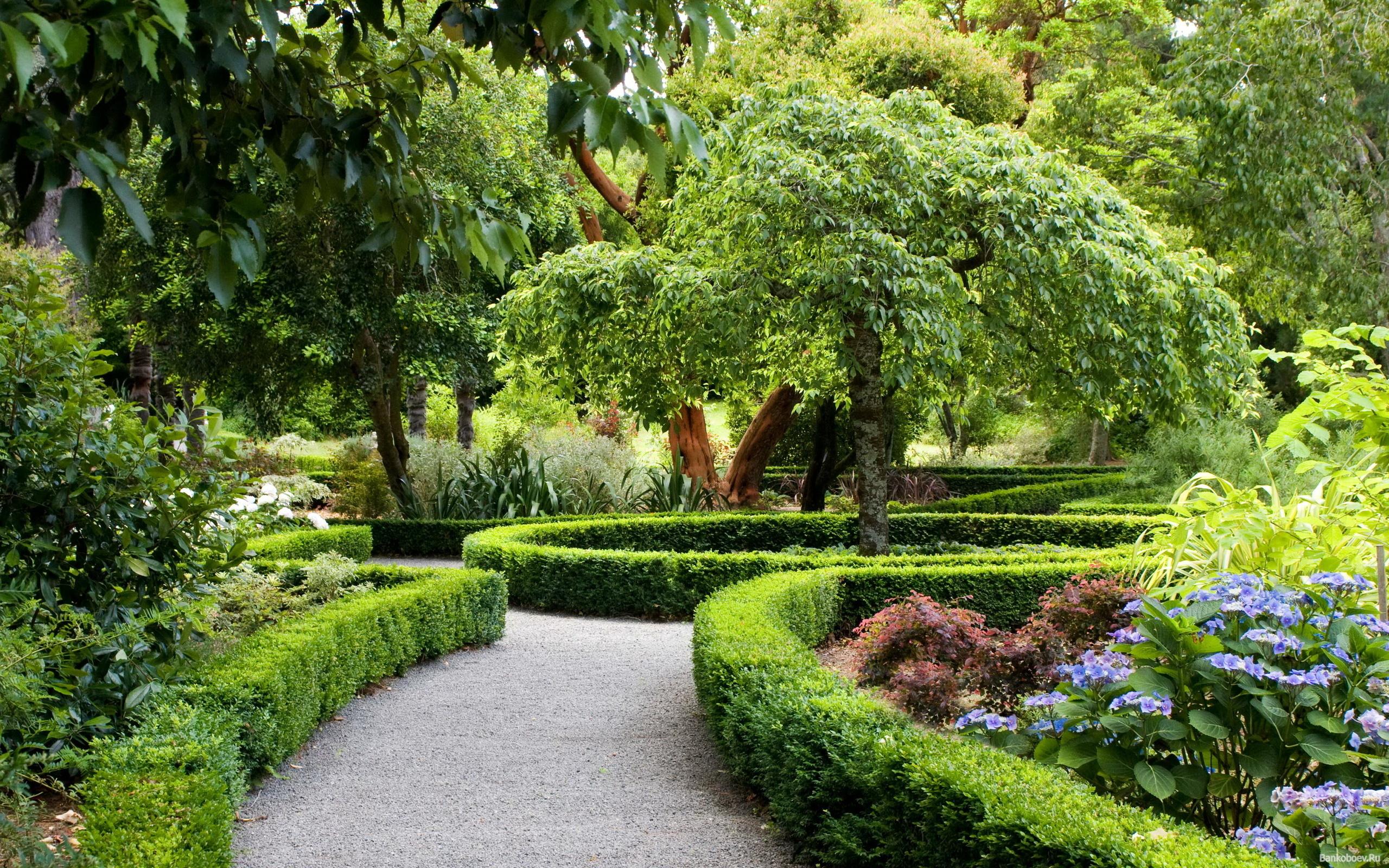 Ландшафтный дизайн двора дома