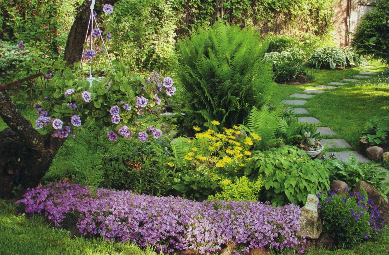 Миксбордер из многолетних растений