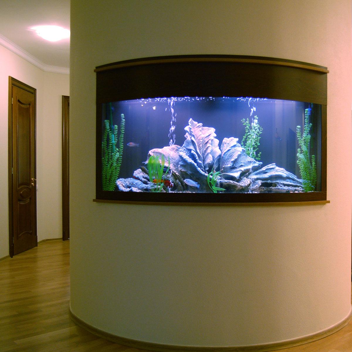 Полукруглый аквариум в стене