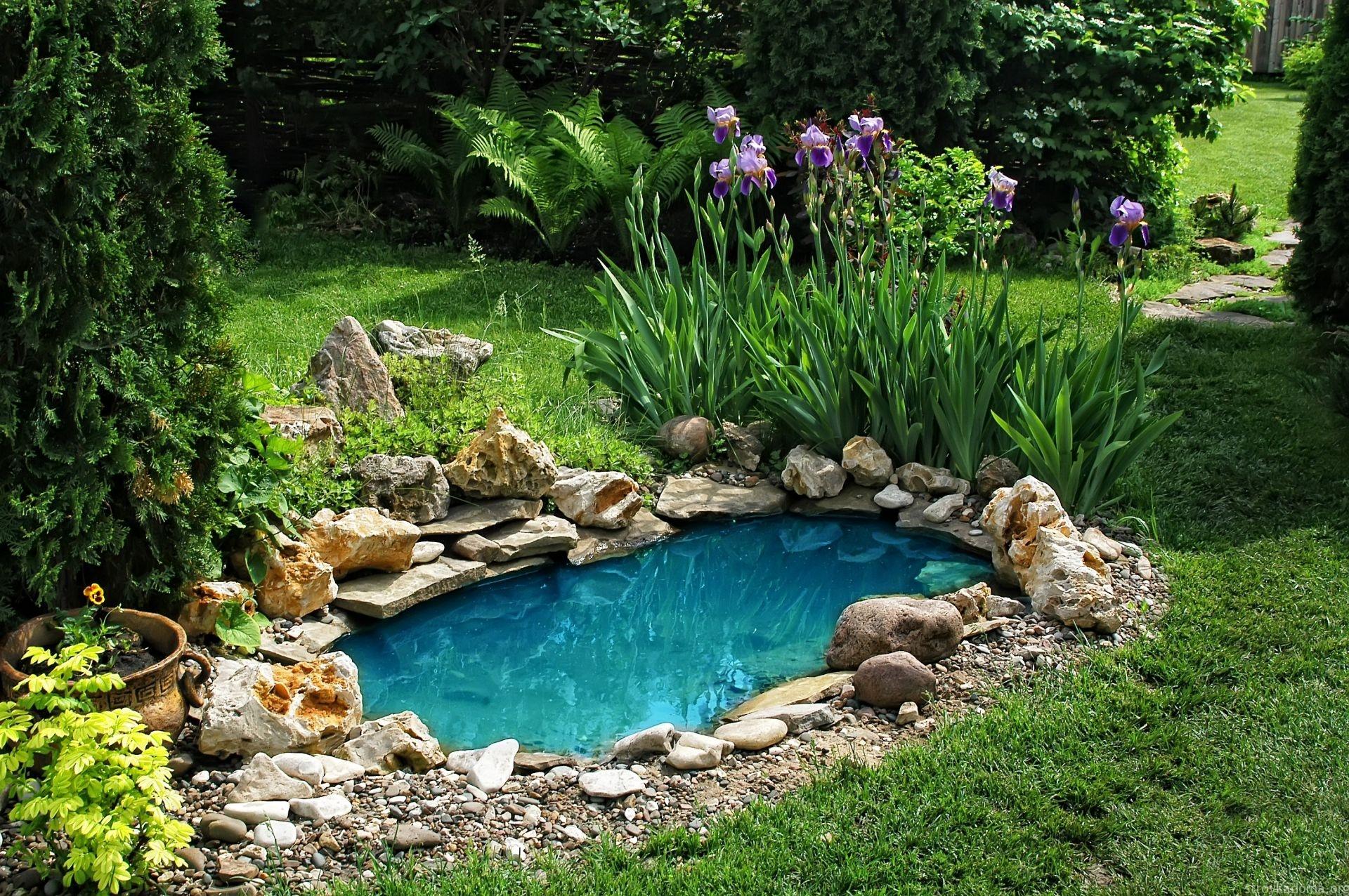 Пруд в ландшафтном дизайне двора дома