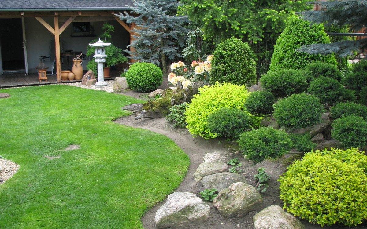 Топиарий в саду