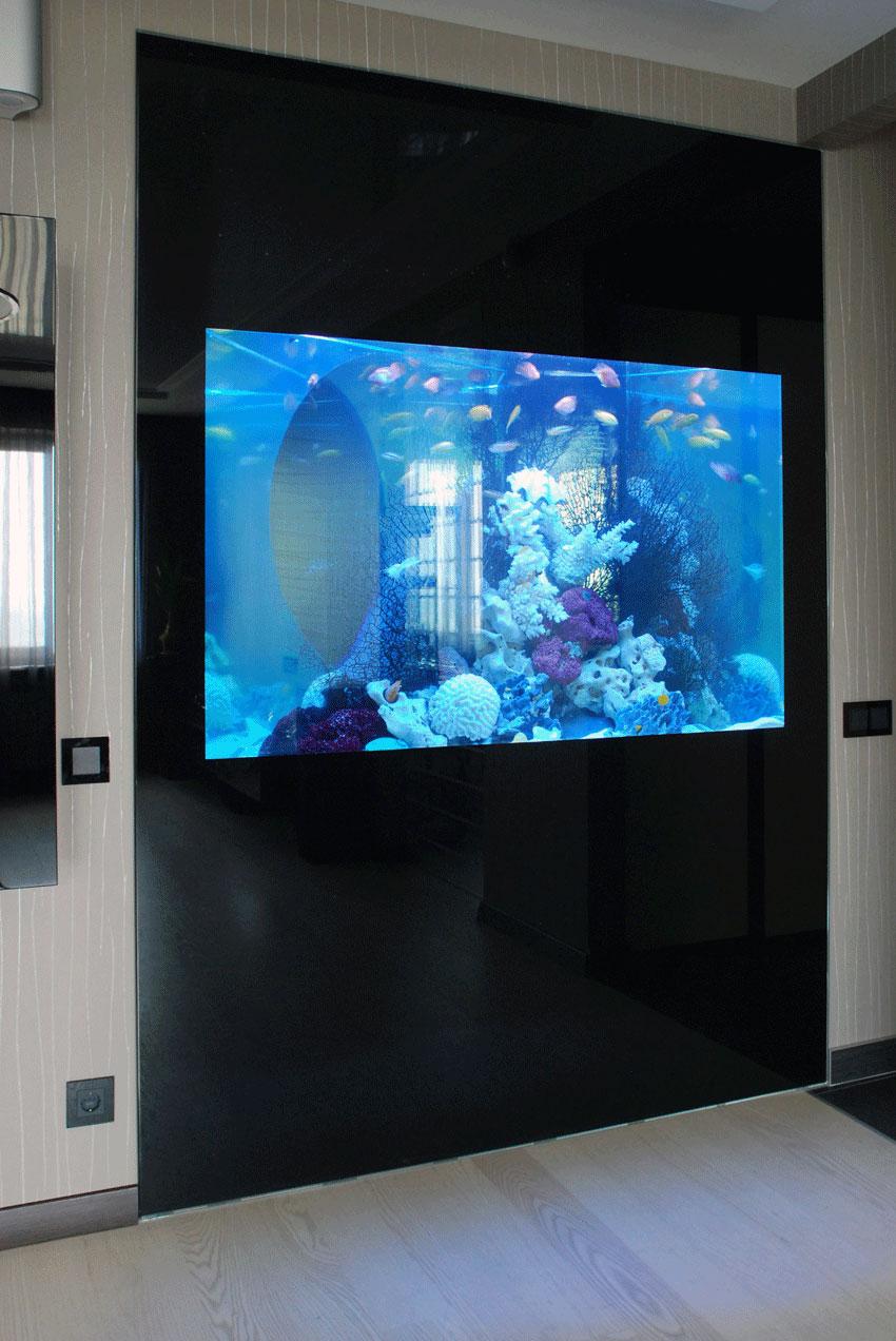 Встроенный в стену аквариум