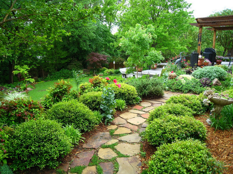 Японский сад с вечнозелеными растениями