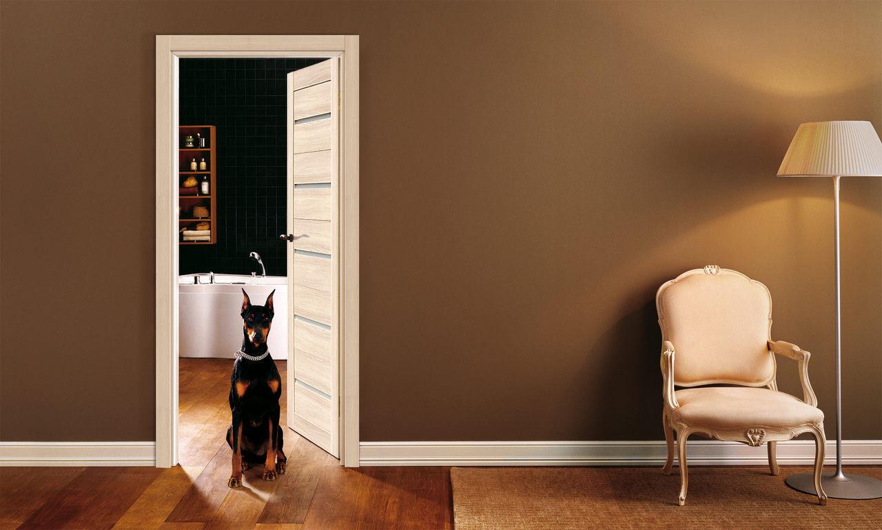 Дверь цвета ясень латте